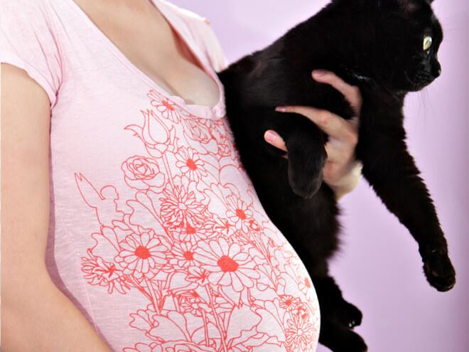 Todo Sobre Mascotas Y Embarazo - sana y hermosa