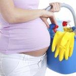 Embarazo Y Productos Químicos En Casa