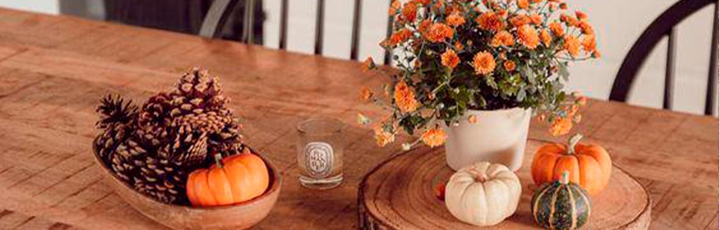 Con estos consejos para decorar tu casa en otoño tendrás un hogar con toque cálido